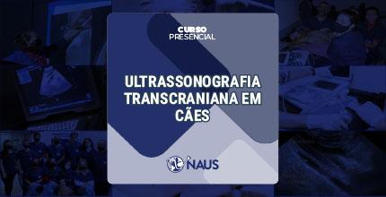 CURSO DE US TRANSCRANIANA EM CÃES