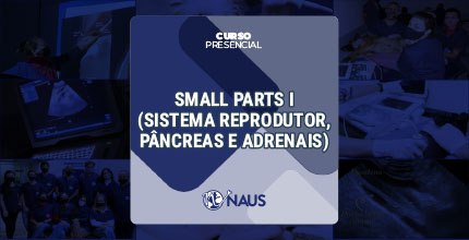 CURSO DE US ABDOMINAL - SMALL PARTS I